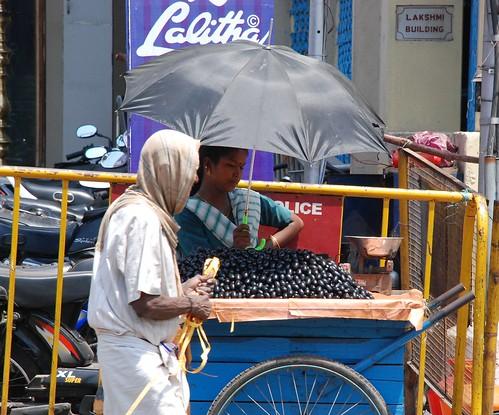 Jamun Fruit Seller