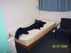 My Bed (Gregory.Romine) Tags: room cc tassie