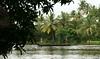 Canoe on Alleppy Backwaters