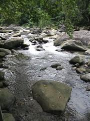 69.蓬萊溪