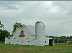 Marathon barn (mar52laine (Loving life with Jesus Christ)) Tags: wood old white signs b