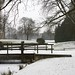 Volkspark in winter 6