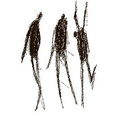 sketch No. 0223 (Valdas M.) Tags: blackandwhite blackwhite noiretblanc silhouettes characters sketches blancinegre enblancoynegro inbiancoenero sortoghvid svartochvitt svartoghvitt juodairbalta ernabl whitesketchescom mustajavalge beltzaetazuria