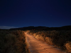 The lonely path (Nocturnal Bob) Tags: california longexposure wooden walkway monolake planks shrubs startrails monocounty southerntufareserve