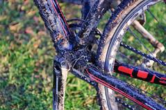 _DSC4075 (Niklasphotography) Tags: sol bike race nikon cross mud stockholm bokeh bikes cx bicycles cycle 28 nikkor sthlm lera velo höst cyclocross cykel 3570mm tävling cyklar d90 ckvalhall storaskuggan valhall happymtb