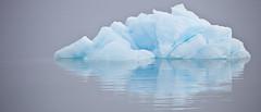 Ursus Maritimus Iceberg (akemiphotos) Tags: ocean blue sea panorama reflection ice norway fog grey aqua turquoise pole svalbard iceberg polar artic spitsbergen
