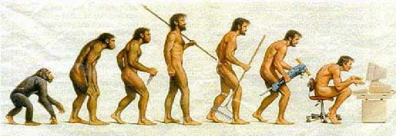 Evolución y las TIC
