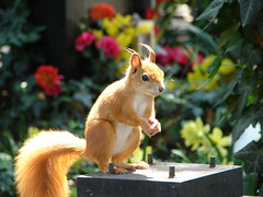 Tombstone squirrel, Vyehrad Cemetery (Tjflex2) Tags: flowers shadow urban orange cute graveyard sunshine topv2222 wonderful rodent squirrel searchthebest prague fuzzy wildlife awesome tail cemetary praha views gathering czechrepublic resting curious 500 goodshot invite topf100 1000 nationalgeographic dazzled vysehrad bushy naturesfinest goldenglobe blueribbonwinner supershot passionphotography specanimal golddragon mywinners abigfave avision goldmedalwinner platinumphoto anawesomeshot impressedbeauty aplusphoto ultimateshot flickrenvy superbmasterpiece goldenphotographer diamondclassphotographer flickrdiamond megashot ysplix theunforgettablepictures photostosmileabout overtheexcellence natureoutpost excapture picturefantastic flckrextraordinarycaptureaward platinumphotography betterthangood goldstaraward iamflickr saariysqualitypictures