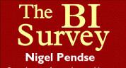 BI Survey