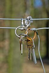 Keychain (Makroworld) Tags: berlin deutschland natur wald frhling spaziergang makroworld