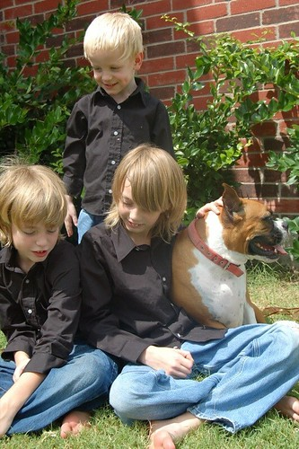 brothers three and a dog