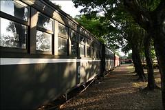 阿里山森林鐵路18