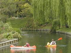 canoes (daphnexduck) Tags: newzealand christchurch garden canoe willow avon monavale