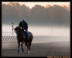 The Man In The Fog (Rock and Racehorses) Tags: morning horse mist ny fog sunrise saratoga frankel racehorses bobbyfrankel