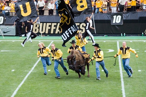 Ralphie takes the Field