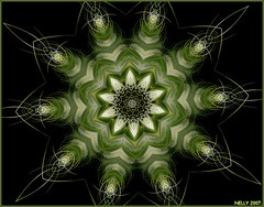 GREEN STAR (MONKEY50) Tags: white black color colour green art colors digital colours kaleidoscope mandala fantasy fractal paintshoppro apophysis fractals soe kaleidoscopes mandalas beautifulphoto colourartaward
