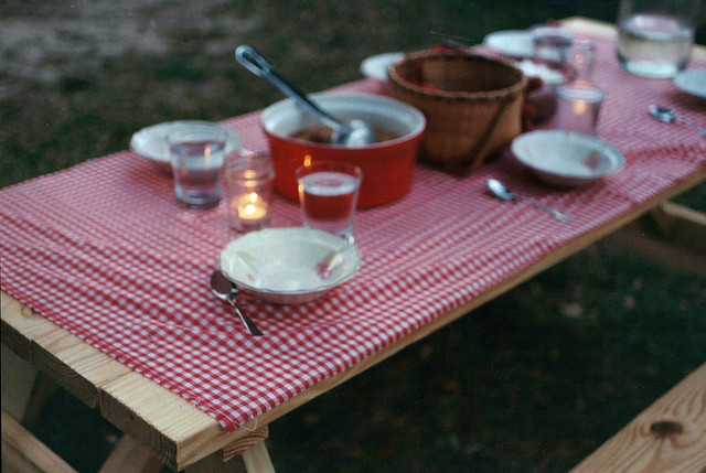 film. picnic.