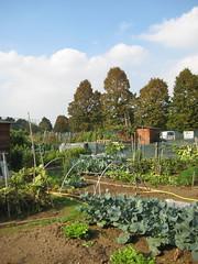 Mirafiori 6-10-2010 2