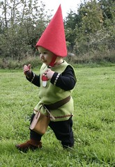 The Woodland Gnome...