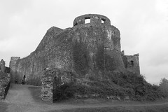 Dinefwr Castle on a drizzly day (Eiona R.) Tags: autumn bw wales mono carmarthenshire wfc dinefwrpark dyffryntywi tywivalley