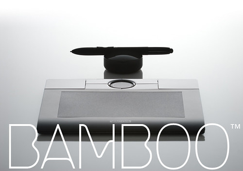 bamboo01