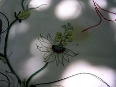 My passiflora