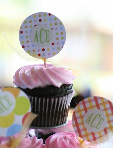 happy birthday, ace
