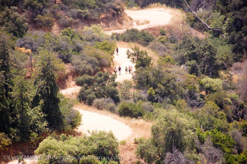 hikinggriffith