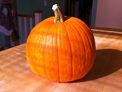 Home-grown pumpkin