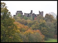 Dinefwr Castle (EionaR.) Tags: autumn castles wales carmarthenshire wfc llandeilo dinefwrpark