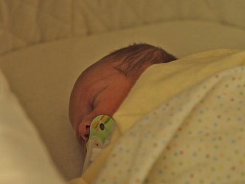 Soleil Sleeps