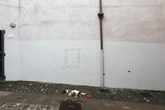 Supuesto Banksy, San Sebastián (Borrado)