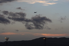 Going up over the clouds (double-h) Tags: mountain clouds evening ana twilight dusk boeing  itamiairport itami itm b777 osakaairport    osakainternationalairport rjoo ja756a  b777300     b777381