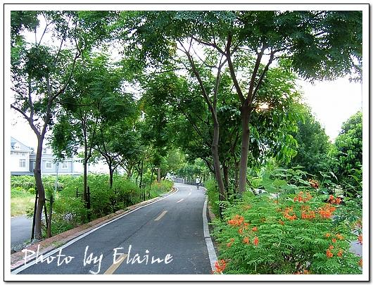 東豐綠廊後半段風景