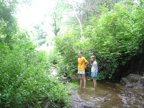 Enfield Creek