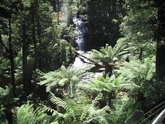 IMG_3008 (kenorrha) Tags: australia greatoceanwalk scenicsnotjustlandscapes