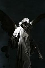 (kobayashi /paolobaldini) Tags: light bw italy milan cemetery statue flicker monumentale vigevano paolobaldini