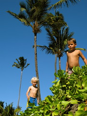 menehune (Kanoe Blue Photo) Tags: palms hawaii jump maui keiki sugarcove