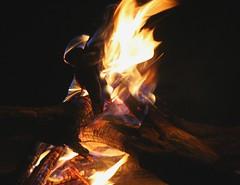 An evening ritual (crafty1tutu (Ann)) Tags: holiday southafrica soe 2007 blueribbonwinner supershot beautifulcapture mywinners supershots worldbest colorphotoaward wowiekazowie flickrphotoaward flickrelite exemplaryshots excapture privategamepark bizafrica