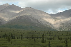 Mountains in Taiga