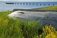 2010-05-22 06-05 Schweden 0631 Öland, Mörbylanga