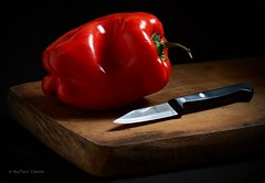 Pimiento (Tato C) Tags: wood red stilllife pepper rojo madera colorado steel knife cook blade pimiento redhot choppingboard tabla cocinar cuttingboard acero cuchillo morrn