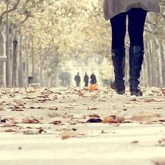 today, ... (Color-de-la-vida) Tags: leaves automne hojas 50mm walk caminar otoño feuilles andar tardor fulles 40d colordelavida canonautumn elpasseig inspiredchoise