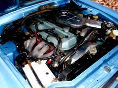 Mi Coupe Torino TSX 1979