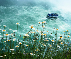 Maid of the Mist - A different perspective (Arindam@Sen) Tags: mist niagarafalls waterfall niagara falls maid maidofthemist flickrsbest aplusphoto excellentphotographerawards