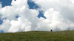 Rocky Mountain National Park - Cathy