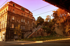 origin of the species (maxivida) Tags: old city bridge trees urban house 1025fav searchthebest decay serbia roots stairway belgrade maxivida beograd sava brankovmost