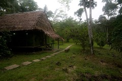 camp peru field station amazon madreselva
