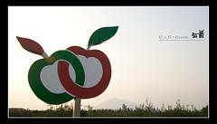200810_hirosaki_094_f_s (C_C_C) Tags: sunset apple japan hirosaki
