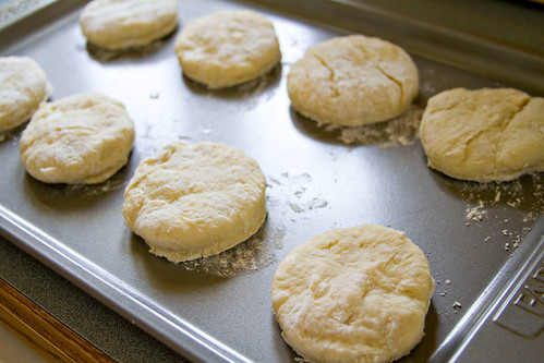 Breakfast Sandwich Biscuits - 5